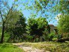 Rustico / Casale Affitto Lugnano In Teverina