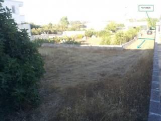 Foto - Terreno edificabile residenziale a Nardo'