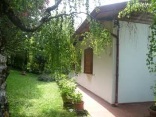 Foto - Casa indipendente Località Montecchio, Montecchio, Chiusi Della Verna