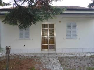 Foto - Casa indipendente 200 mq, buono stato, San Martino In Rio