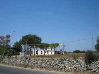 Foto - Rustico / Casale, da ristrutturare, 1800 mq, Galatone