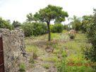 Foto - Rustico / Casale Strada Provinciale 224 46, Riposto