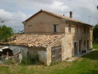 Foto - Rustico / Casale, da ristrutturare, 200 mq, Morro D'Alba
