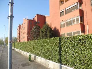 Foto - Trilocale via Amerigo Vespucci 23, Cesano Boscone