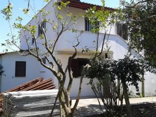 Foto - Villa via Capitancelli, Velletri