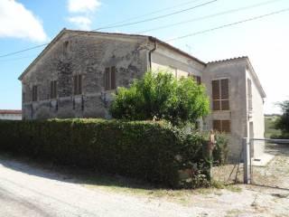 Foto - Rustico / Casale Contrada Maiolino 4, Morro D'Alba
