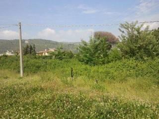 Foto - Terreno agricolo in Vendita a Maddaloni