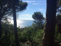 Foto - Villa via Padre Semeria, Monterosso Al Mare