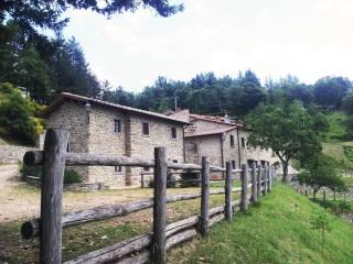 Foto - Terreno agricolo in Vendita a Poppi