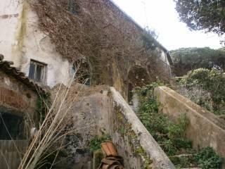 Foto - Rustico / Casale via Franco 5, Castanea delle Furie, Messina