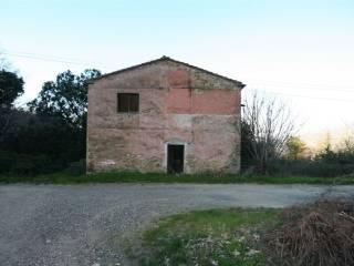 Foto - Rustico / Casale, da ristrutturare, 200 mq, Sassetta