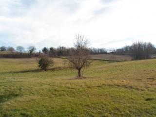 Foto - Terreno agricolo in Vendita a Amandola