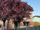Foto - Trilocale via della Spiga 9, Correggio
