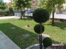 Foto - Appartamento via Romiati, Campodarsego