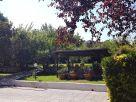 Foto - Villa Località Colle Fiorito 32, Trevignano Romano