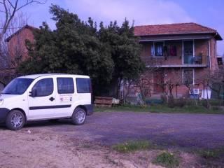 Foto - Rustico / Casale Strada, San Giacomo, Rocca Grimalda