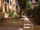 Foto - Trilocale via San Zanobi, Firenze