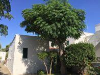 Foto - Villa, buono stato, 150 mq, Otranto