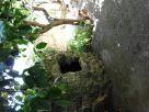 Foto - Vendita villa con giardino, Suni, Sardegna Centro Occidentale