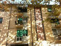 Foto - Appartamento buono stato, secondo piano, Pisa