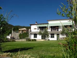 Foto - Villa, ottimo stato, 350 mq, Piazza, Deiva Marina