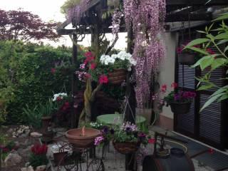 Foto - Villa via Parada 40, Vedano Al Lambro