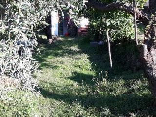 Foto - Quadrilocale via Belvedere 3, Massa