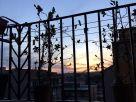 Foto - Monolocale ottimo stato, ottavo piano, Roma
