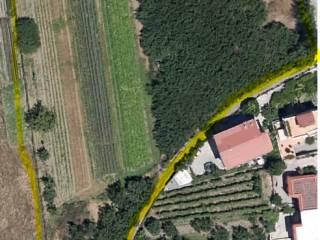 Foto - Terreno agricolo in Vendita a Pomigliano D'Arco