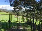 Foto - Terreno agricolo in Vendita a Civitavecchia