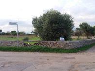 Foto - Terreno agricolo in Vendita a Copertino