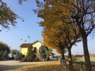 Foto - Rustico / Casale Circonvallazione di Borgaretto, Nichelino