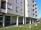 Foto - Quadrilocale buono stato, primo piano, Lugo