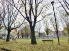 Foto - Bilocale via Pallanza 36, Torino