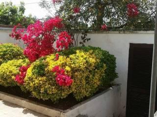 Foto - Quadrilocale ottimo stato, Otranto