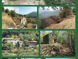 Foto - Terreno agricolo in Affitto a Varazze