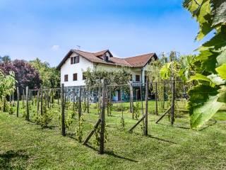 Foto - Villa 800 mq, Cassano Spinola