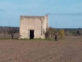 Foto - Terreno agricolo in Vendita a Campi Salentina