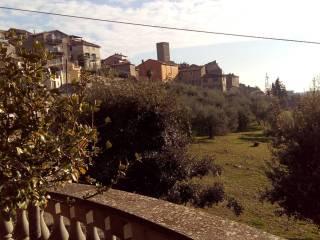 Foto - Villa via Fontanasecca, Fabrica Di Roma
