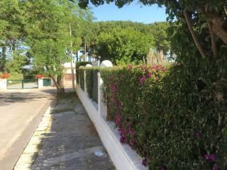 Foto - Villa, buono stato, 240 mq, Palermo