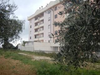 Foto - Appartamento all'asta via Nuova di San Liborio snc, Civitavecchia