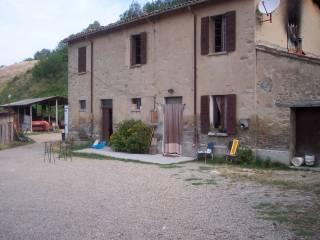 Foto - Rustico / Casale Strada Vicinale Vigona Monte della Fusa, Predappio