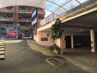 Immobile Affitto Roma 41 - Castel di Guido - Casalotti - Valle Santa