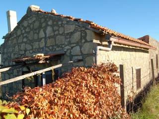 Foto - Rustico / Casale Strada Vicinale dell'Argento-Fontanil Nuovo, Tarquinia
