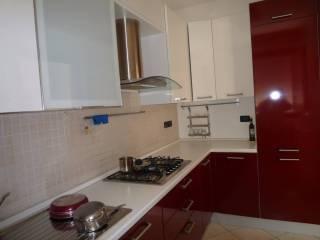 Foto - Appartamento nuovo, piano terra, Rovigo
