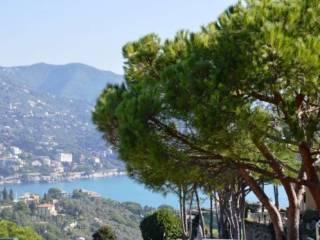 Foto - Appartamento buono stato, San Michele Di Pagana, Rapallo