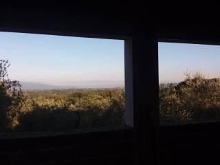 Foto - Villa via di Campiglioni, Montevarchi
