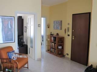 Foto - Trilocale ottimo stato, quarto piano, Grugliasco
