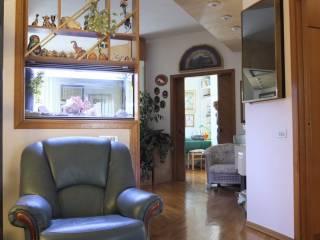 Foto - Appartamento via Fratelli Cairoli, Gioia Del Colle