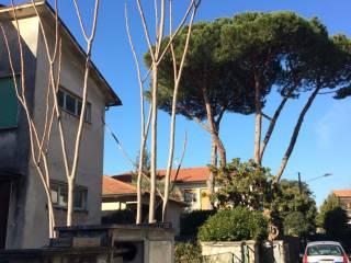 Foto - Villa, da ristrutturare, 130 mq, Marina Di Massa, Massa